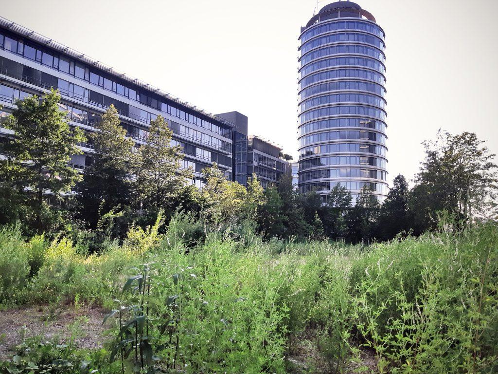 Grundstück für Hospiz